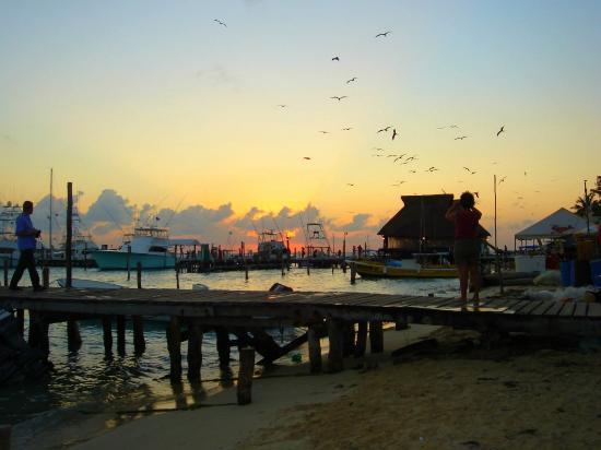 Caribbean Brisas: Sunset looking from Brisas towards Ballyhoo