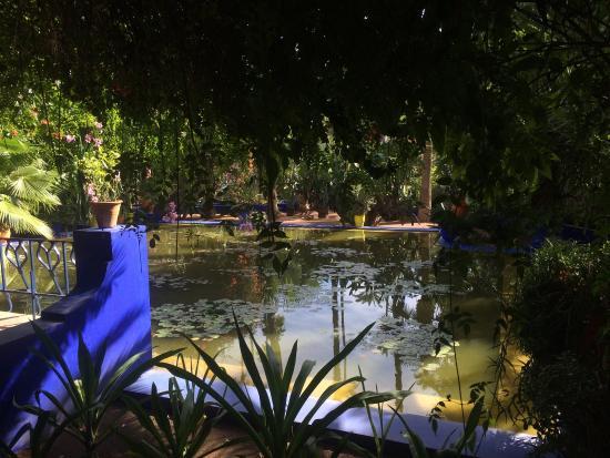 Jardin Majorelle Bild Von Majorelle Garten Jardin