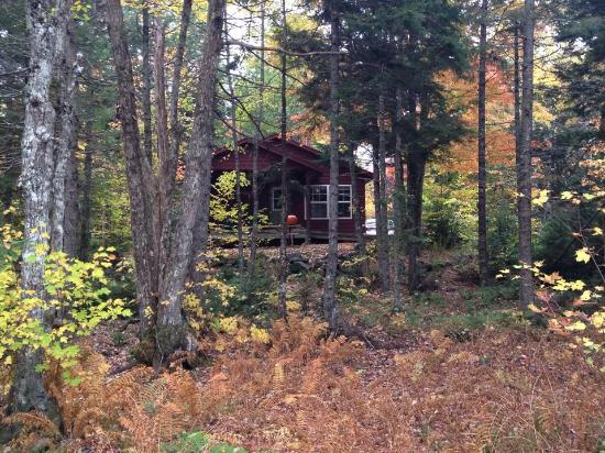 Mersey River Chalets and Nature Retreat: Our chalet