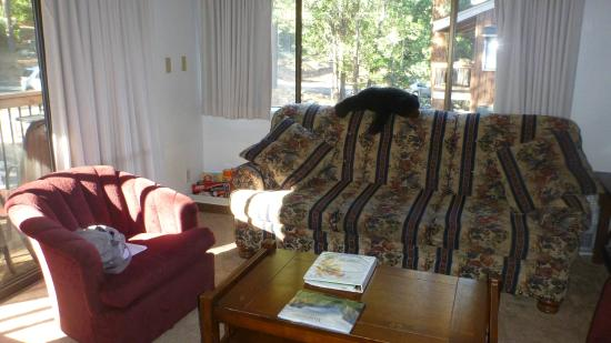 Yosemite West Condominiums: Living area showing lovely view