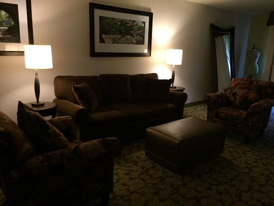 Hilton Garden Inn New York/Staten Island: Living room in suite