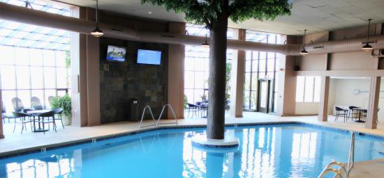 The Ridge Hotel: Indoor Pool