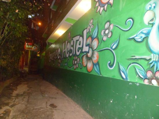 Papagaio Hostel & Pousada: Fachada da Pousada