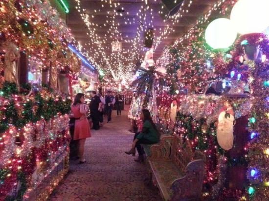 Campo Verde: The Lights And Colors At Xmas Time Are Mind Blowing