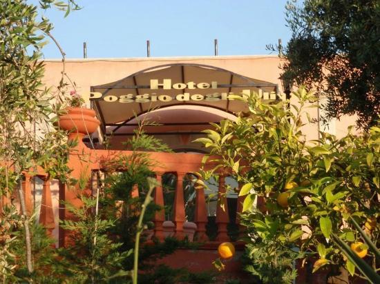 Photo of Hotel Poggio Degli Ulivi Rodi Garganico