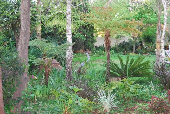 Sunwardpark Guesthouse: Garden