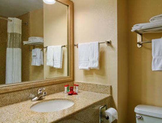 Ramada Harrisburg/Hershey Area: Bathroom