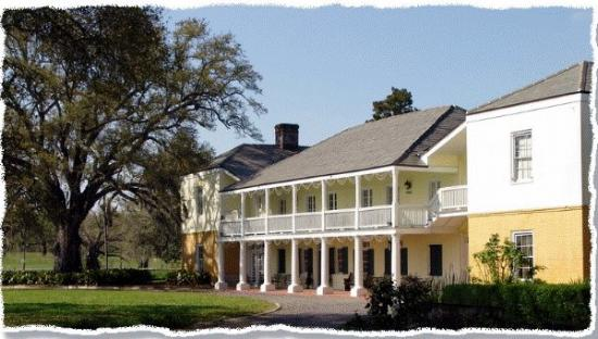 Ormond Plantation Manor House: Beautiful Ormond Plantation