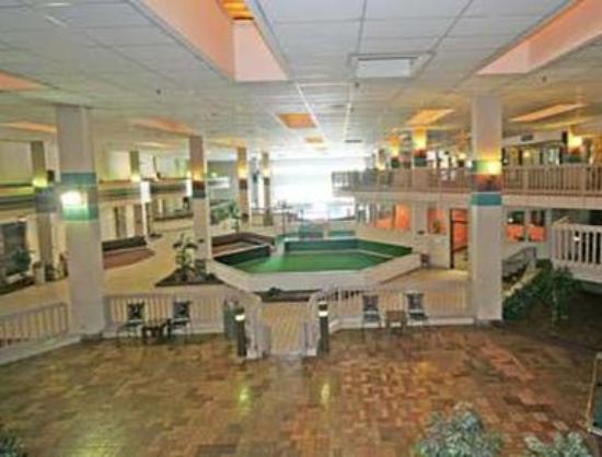 Ramada Asheville / Biltmore West: Atrium Pool Table