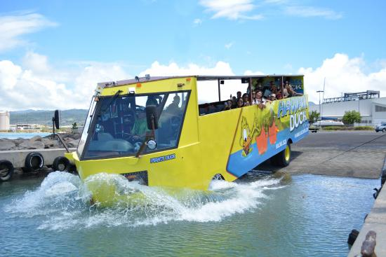 Hawaii Duck Tours