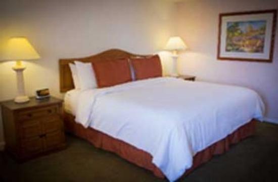 Arizona Golf Resort: Resort King