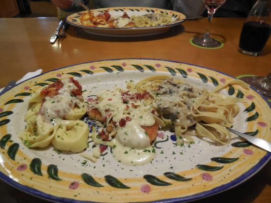 Northern Tour of Italy - Picture of Olive Garden, Boston ...