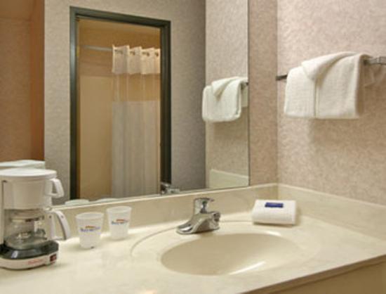 Baymont Inn & Suites Muskegon: Bathroom