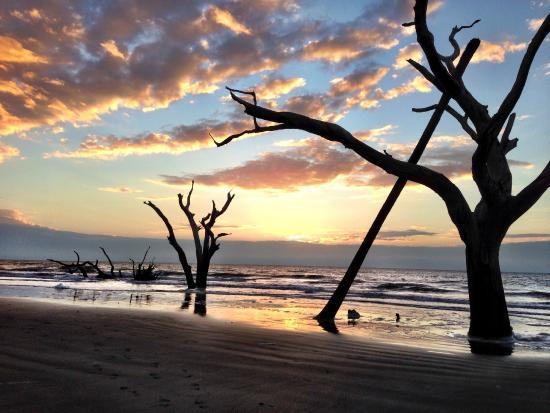 Coastal Expeditions Sunrise Boneyard Beach Bulls Island