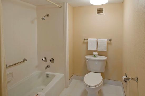 Americas Best Value Inn: Accessible Bathroom