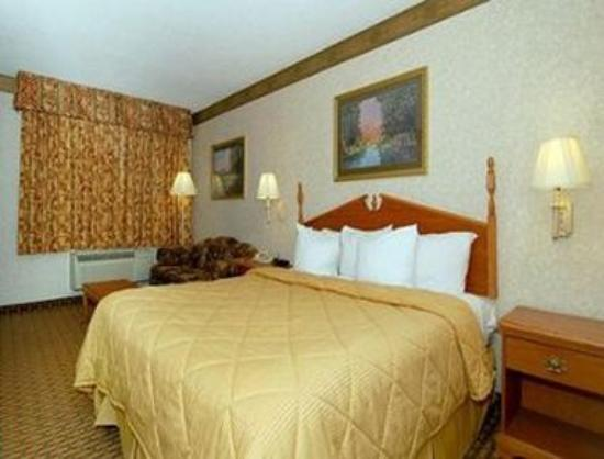 Days Inn Pearl/Jackson Airport : One Queen Bed Room