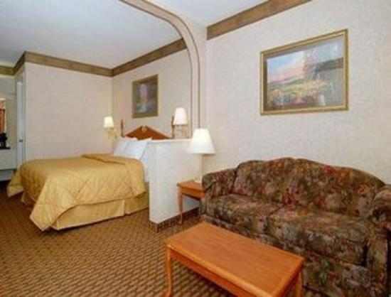 Days Inn Pearl/Jackson Airport : One King Suite Bed Room