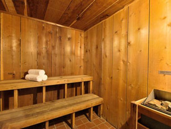 Days Inn Arkadelphia : Sauna