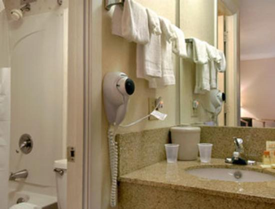 Days Inn Nashville at Opryland/Music Valley DR : Bathroom