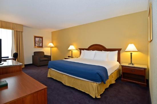 BEST WESTERN Yadkin Valley Inn & Suites: Guest Room