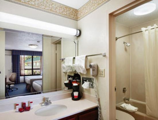 Ramada New Braunfels: Bathroom
