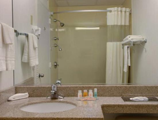 Howard Johnson Inn - Newburgh : Bathroom