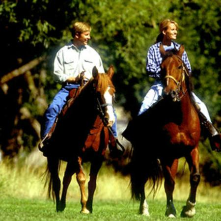 Homestead Resort: Enjoy Horseback Riding On our Grounds