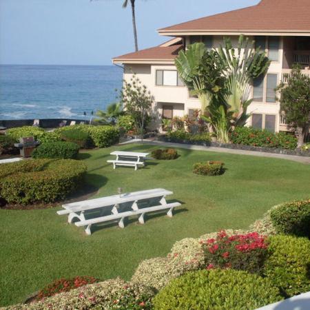 Sea Village Resort: SVGrounds