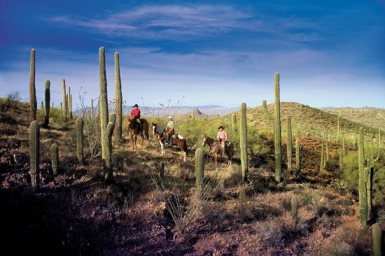 Rancho de los Caballeros: Desert Trail Ride