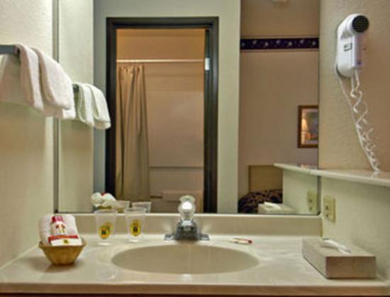 سوبر 8 سان أنطونيو/فييستا: Bathroom
