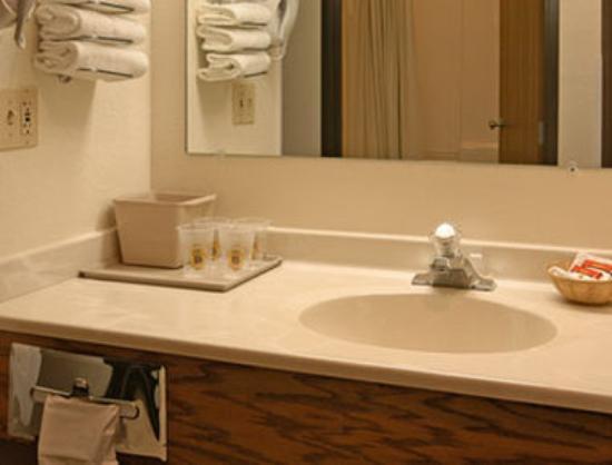 Super 8 Akron S/Green/Uniontown OH: Bathroom