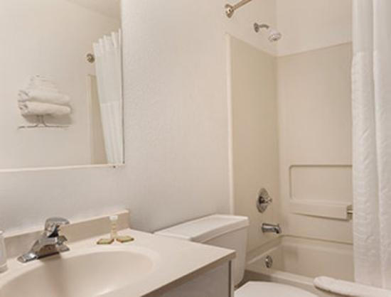 Super 8 Mundelein/Libertyville Area: Bathroom
