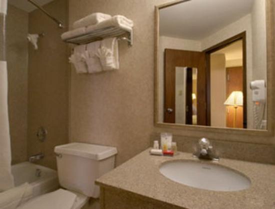Ramada Pottsville: Bathroom