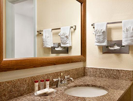 Ramada at Spokane Airport: Bathroom