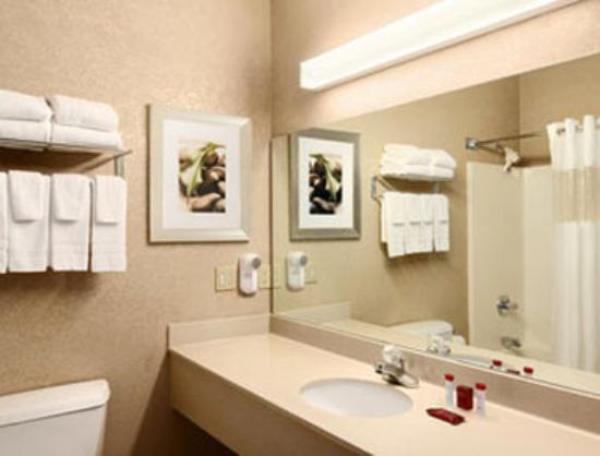 Ramada Louisville Expo Center : Bathroom