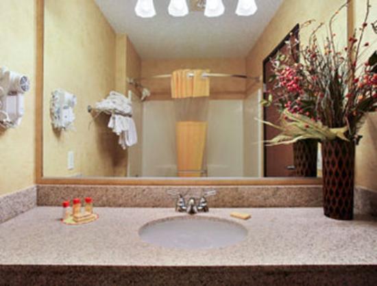 Days Inn & Suites Vancouver: Bathroom