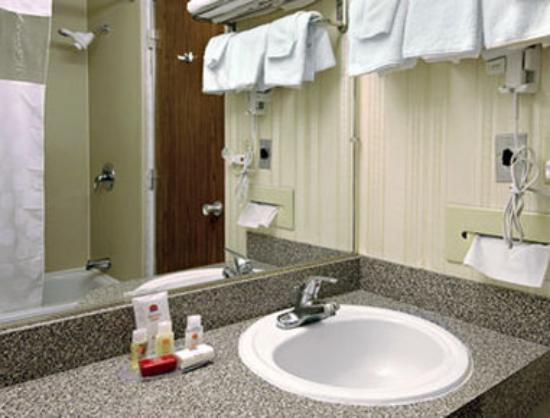 Ramada Limited Lake City: Bathroom