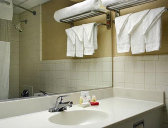 Ramada Yonkers: Bathroom