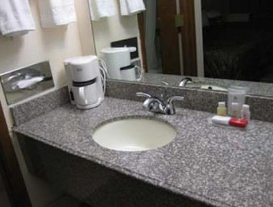 Ramada Giddings: Bathroom
