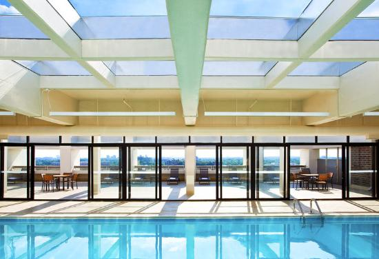 Sheraton Pentagon City Hotel: Pool And Sun Deck