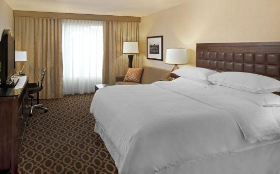 Sheraton Ann Arbor Hotel: Deluxe King Room
