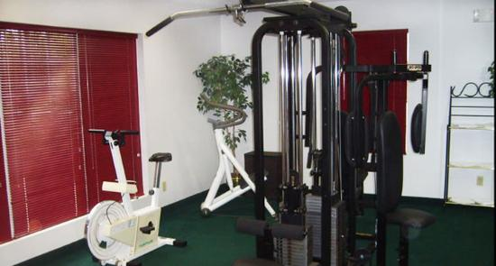 Jameson Inn Oakwood: Health club