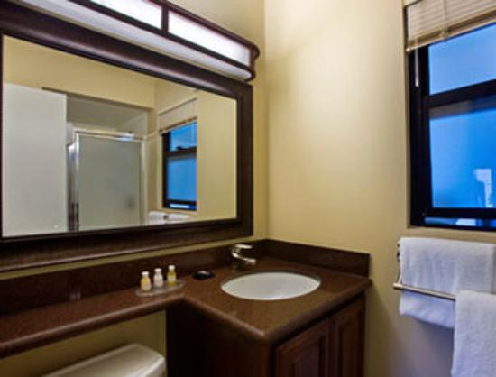 Travelodge at the Presidio San Francisco : Bathroom