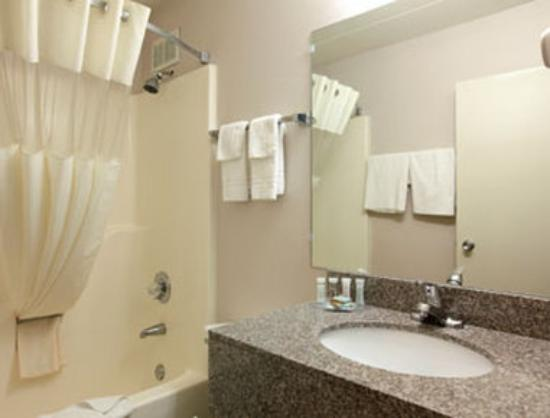 Travelodge-Florence/Cincinnati South: Bathroom