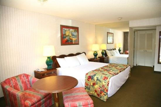 Dana Point Harbor Inn : Guest Room