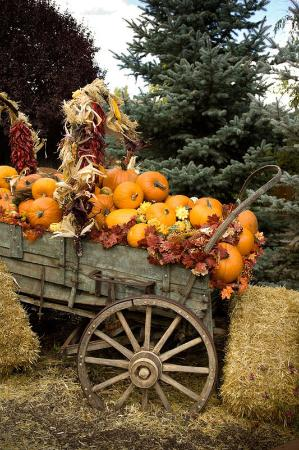 Inn on the Alameda: Autumn Wagon
