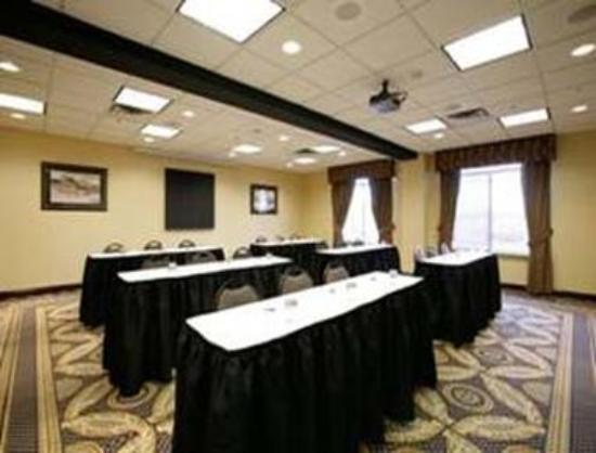 Wingate by Wyndham Tinley Park: Meeting Room
