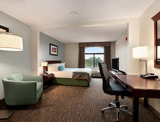 Wingate by Wyndham Round Rock Hotel & Conference Center: Standard King Bed Room