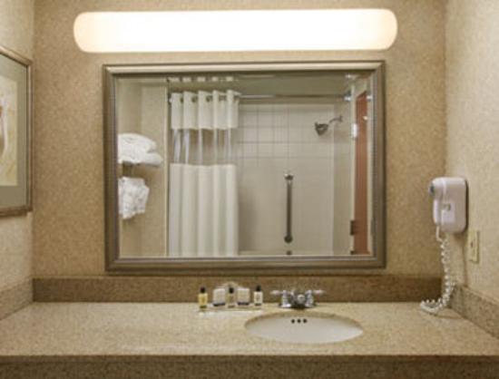 Wingate By Wyndham Charlotte Airport I-85 / I-485 : Bathroom