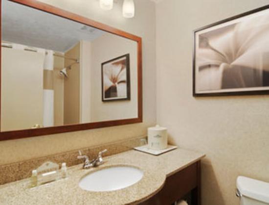 Wingate by Wyndham Columbus : Bathroom